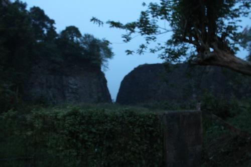monkey forest kozhencherry